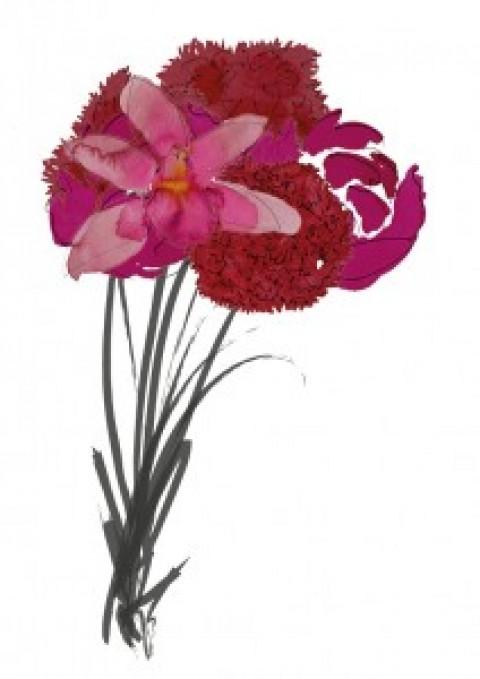 Les fleurs préférées des français