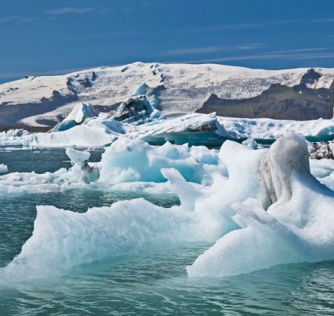 COP 21 : les enjeux