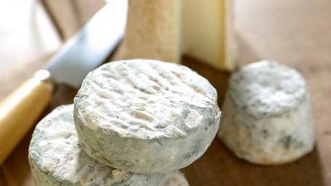 🔒 Les fromages de chèvre