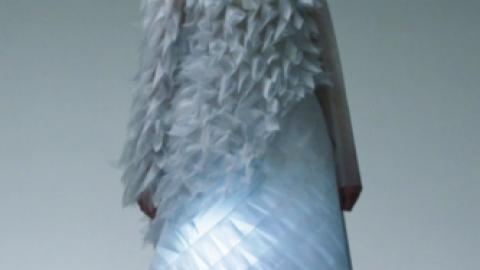 Les robes vivantes