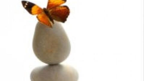 Journée de la fibromyalgie
