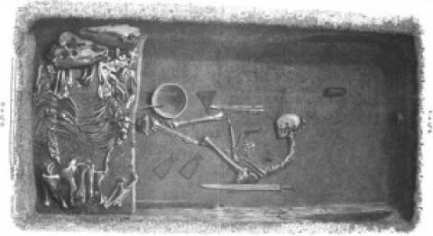 Guerrière viking